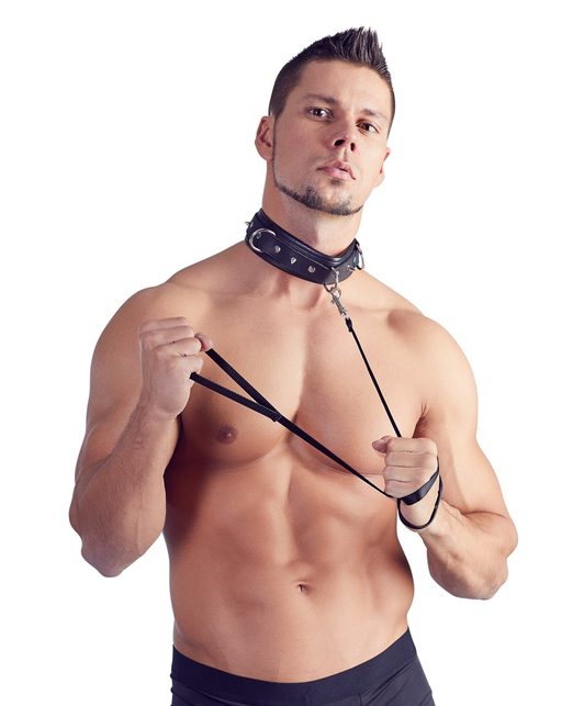 Bad Kitty studded collar with leash