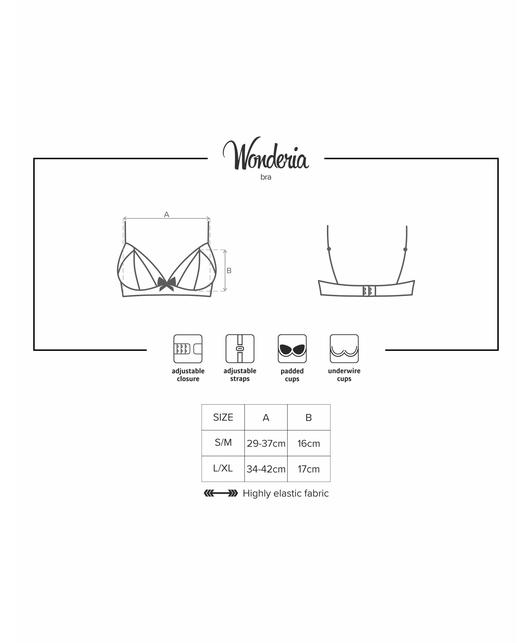 Obsessive black embroidered bra