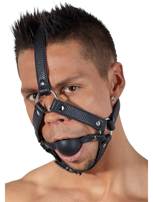 Bad Kitty head harness with a ball gag