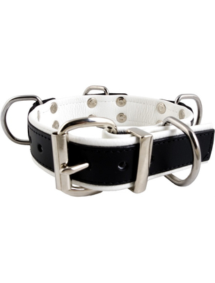 Mister B slave collar with 4 D-rings