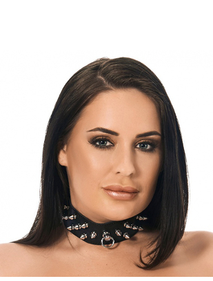 Let's Play leather collar